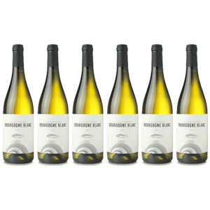 Product image of 6 x Adnams Bourgogne Blanc from Adnams