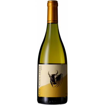 Product image of LOU COUCARDIE BLANC 2016 - DOMAINE GASSIER from Vinatis UK